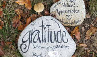 Gratitude For Economic Specialization